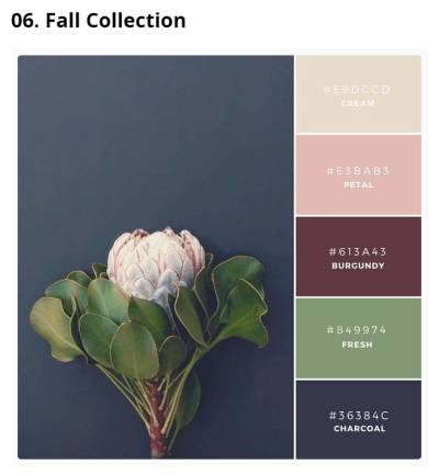 canva-palette-fall